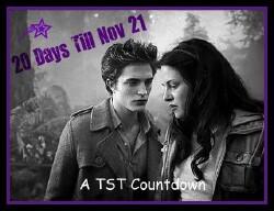 20 Days Till November 21!