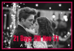 21 Days to November 21: A TST Countdown