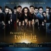 Fan-Made Twilight Saga Marathon Posters