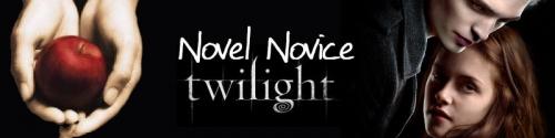 Novel Novice Twilight is seeking submissions...