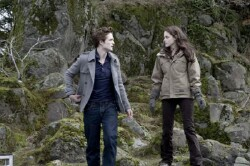 EW Needs Your Twilight Questions