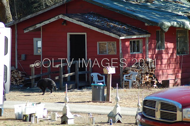 "Pics Galore: All Kinds of ""Breaking Dawn"" Sets Being Prepped"