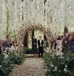 MTV: 5 Reasons to Get Excited about 'Breaking Dawn' + Top Trailer Moments