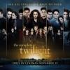 Fan-Made Twilight Saga Marathon Posters